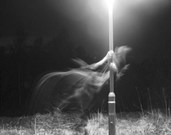 Ghost around the lamppost - SedonaParanormal-com